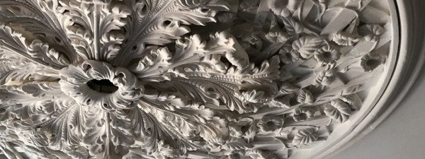 Glen Mary, ceiling medallion, plaster ornament, architectural ornament, morning glories